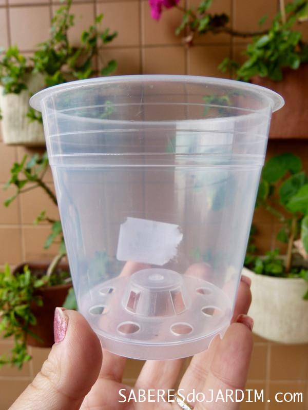 Vaso de Plástico Transparente para Orquídea