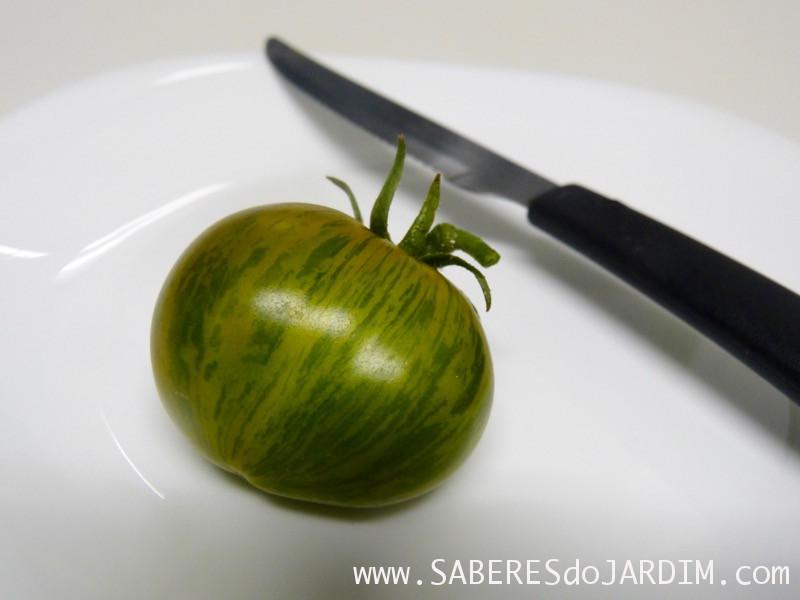 Sementes de Tomate